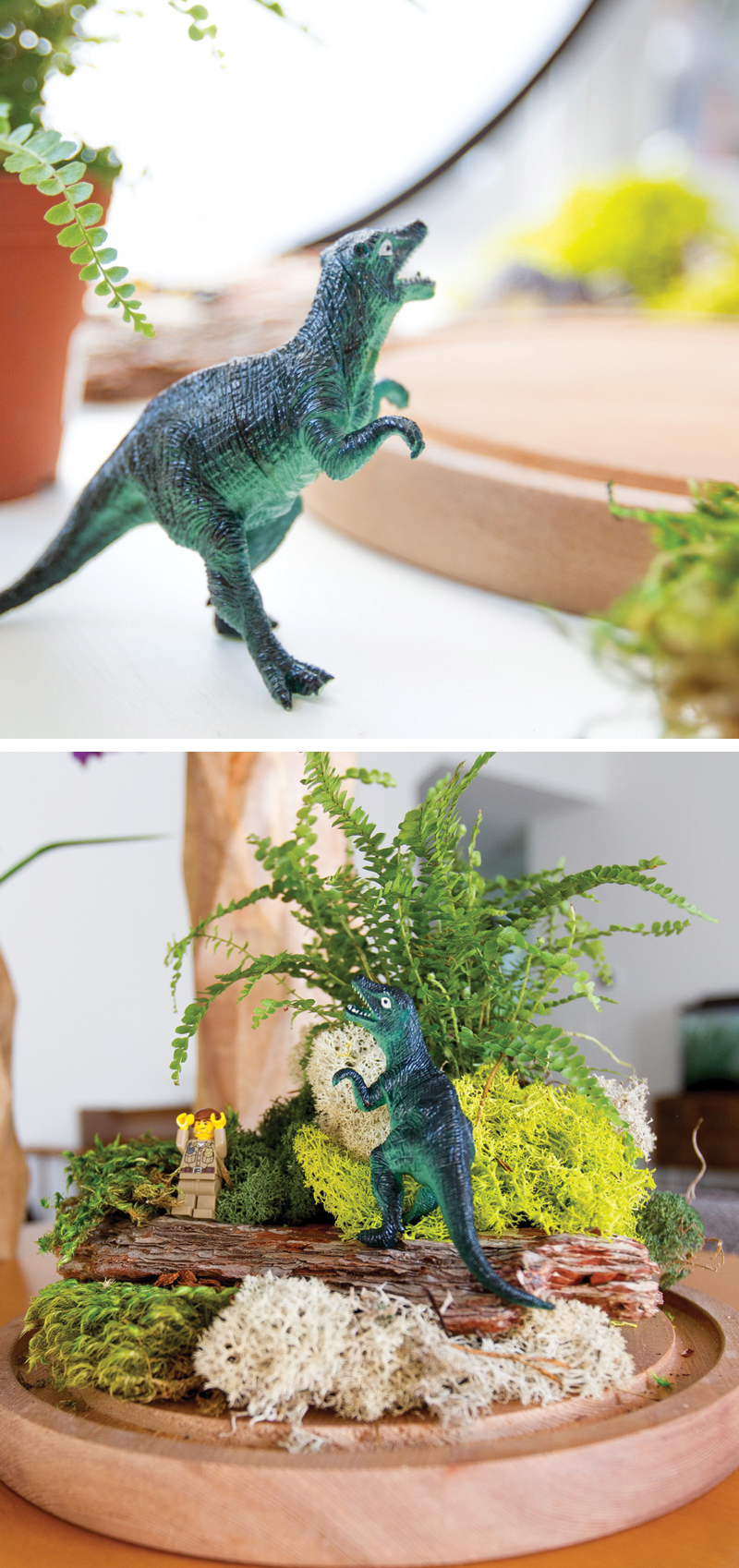 How to make a dinosaur fairy garden
