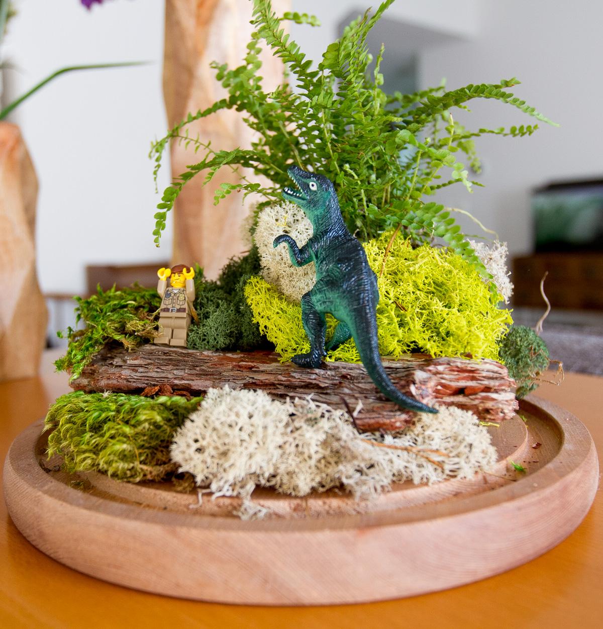 DIY dino fairy garden terrarium