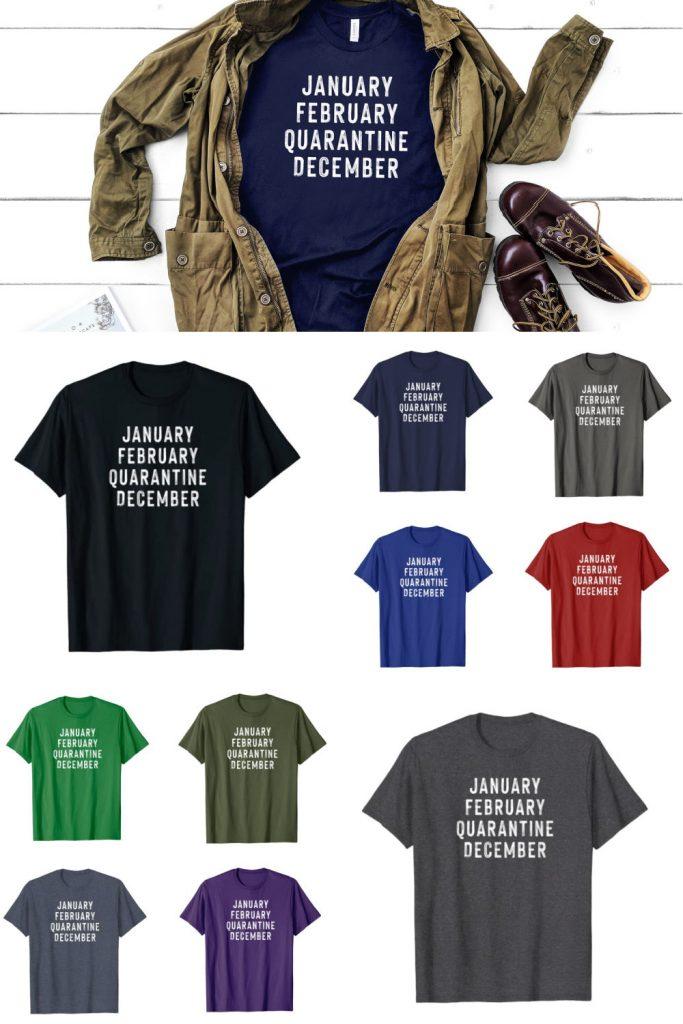 january february quarantine december t-shirt 2020 funny