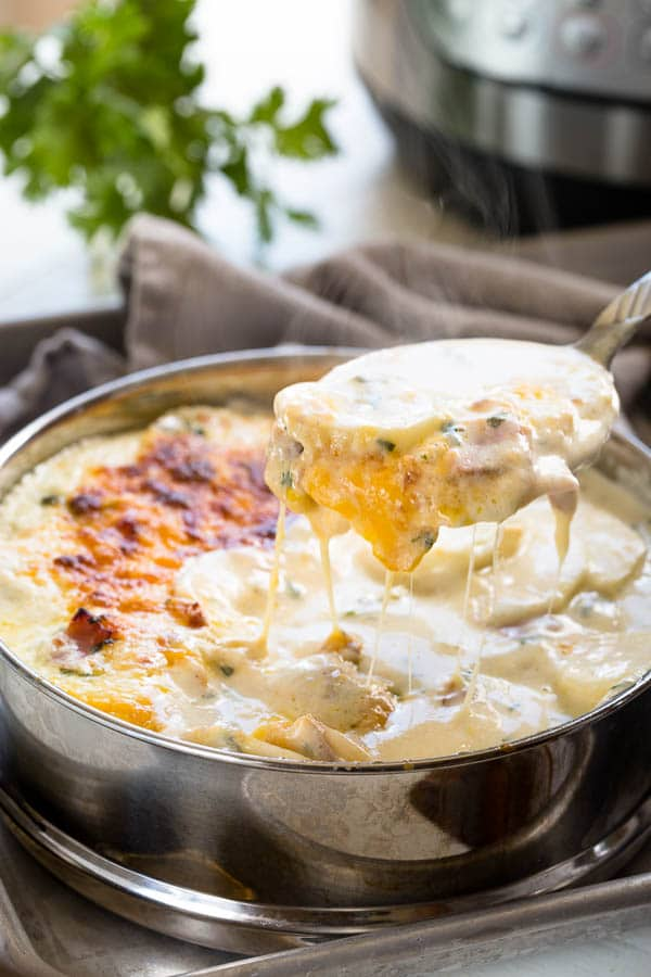 instant pot scalloped potatoes spoon bowl
