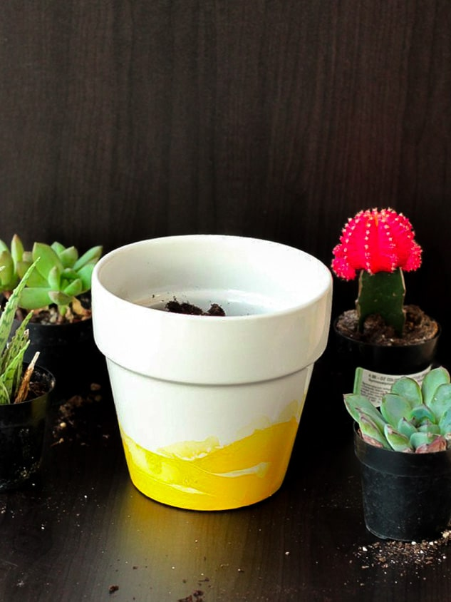 white potted plant with succulents in plastic pots being potted.
