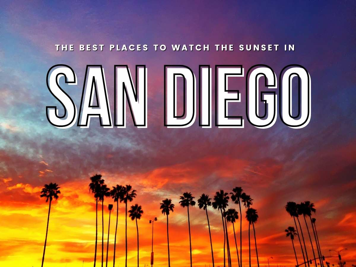 GORGEOUS red and yellow sunset with silhouette palm trees . Test says the best places to watch the sunset in San Diego